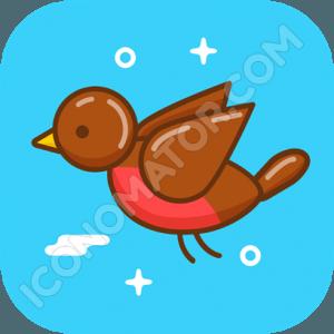 Funny Bird Icon
