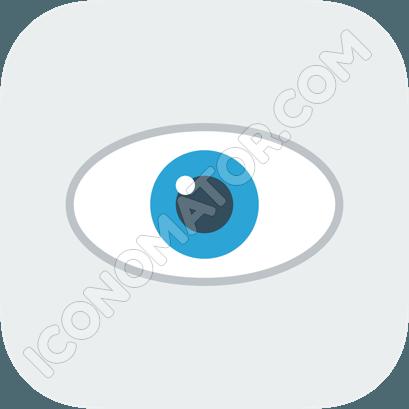 Eye Gray & Blue Icon