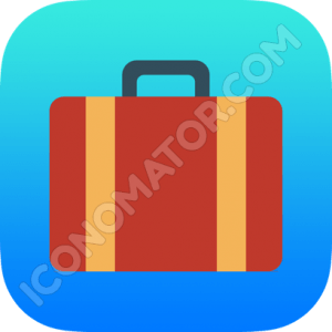 Briefcase Red Icon