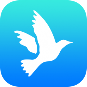Peace White Dove Icon