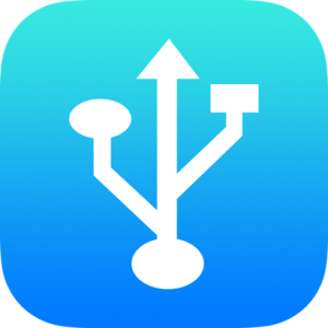 Networks Icon