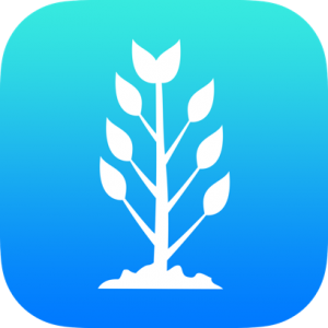 Tree Outline Icon