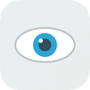 Eye Gray & Blue Icon